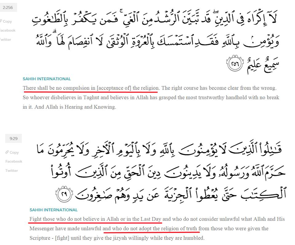 Mohammed-schizophrenic
